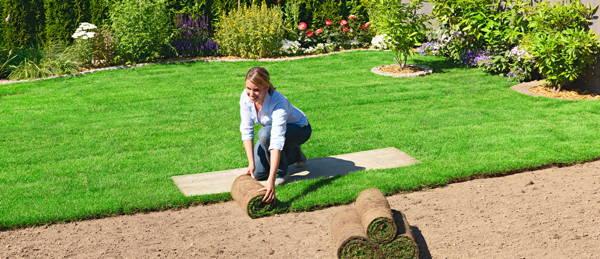 Rasenfläche Mit Rollrasen Neu Anlegen
