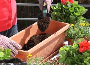 Anleitung Blumenkästen Auf Dem Balkon Bepflanzen Diy Info