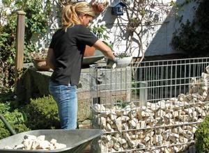 Super Anleitung: Zaun oder Sichtschutz mit Gabionen bauen   DIY-Info JL98